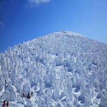 【虎航】日本東北藏王樹冰秘境溫泉美食5日