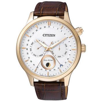 CITIZEN 星辰 日月極光時尚大錶面皮帶腕錶/42.5mm/AP1052-00A