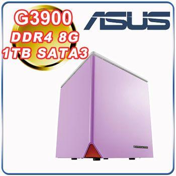 |華碩H110平台|小資首選 Intel G3900雙核 4G記憶體 1TB大容量 雙核文書桌上型電腦