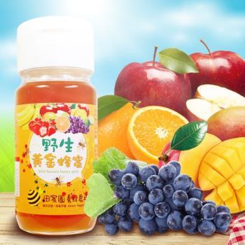 【田蜜園】養蜂場新鮮黃金蜂蜜-特惠組