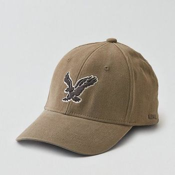 【American Eagle 】2016男時尚Flex牛仔布大鷹標橄欖色帽子(預購)