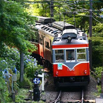 【12月】東京箱根鐵道纜車迪士尼哆啦A夢5日