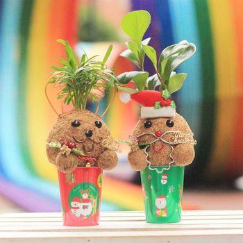 【Light+Bio】幸福耶誕老人麋鹿苔球二入組合