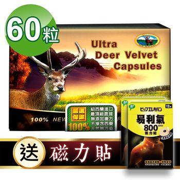 【瓦特爾】紐西蘭鹿茸60粒 (贈:易利氣磁力貼800高斯*2盒)