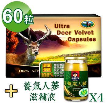 【瓦特爾】紐西蘭鹿茸60粒 (贈:桂格養氣人蔘滋補液60ml*4瓶)