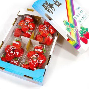 【鮮果日誌】日本進口空運草莓(精美禮盒4入裝)