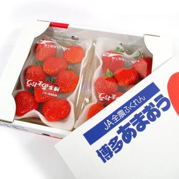 【鮮果日誌】日本進口空運草莓(精美禮盒2入裝)