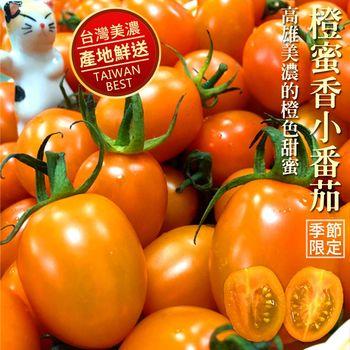 【吃貨達人】美濃超人氣橙蜜香小番茄-2箱(3台斤/箱)