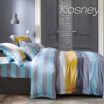 【KOSNEY】菲爾斯  雙人100%天絲TENCE八件式兩用被床罩組