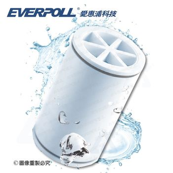 【EVERPOLL】E.P.愛惠浦微分子SPA沐浴器/除氯沐浴器MK-809專用濾芯 (MKC)