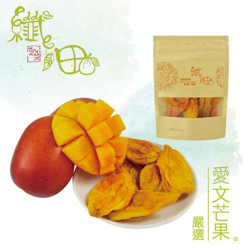 16包組合價【纖沺大山元農場】愛文芒果乾 (100克/包)
