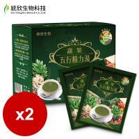 統欣生技 蔬果五行精力湯(15包 盒)x2