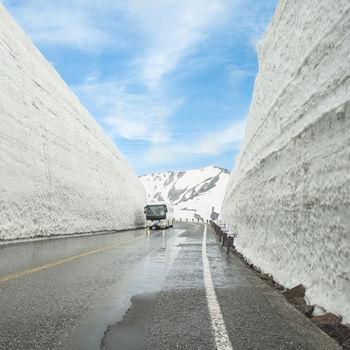 【最後2團】雪壁絕景立山黑部合掌村藤花伴芝櫻六日