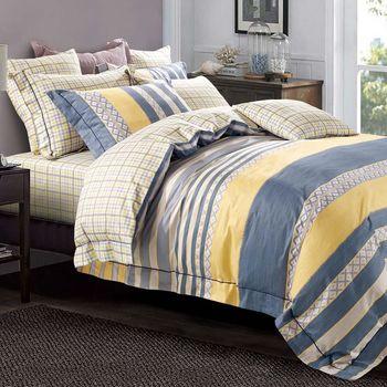 【Betrise】簡約主義-環保印染德國防螨抗菌精梳棉四件式兩用被床包組-加大