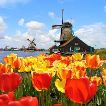 【鬱金香季】超值荷蘭庫肯霍夫海尼根體驗羊角村雙遊船七日