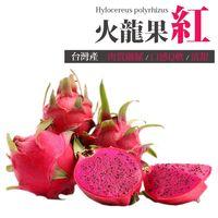 ~台北濱江~ 產紅肉火龍果1盒 ^#40 2顆裝 ^#95 共約1kg ^#47 盒 ^#
