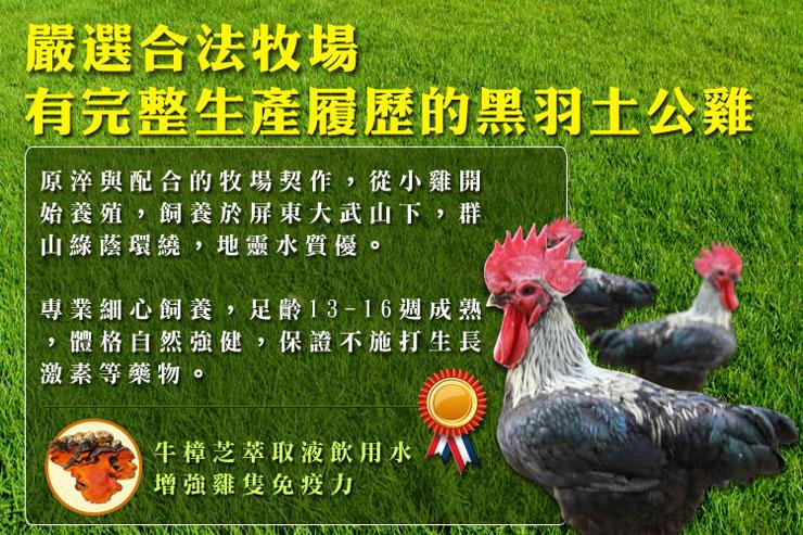 嚴選合法牧場,有完整生產履歷的黑羽土公雞~肉質佳、腹脂少