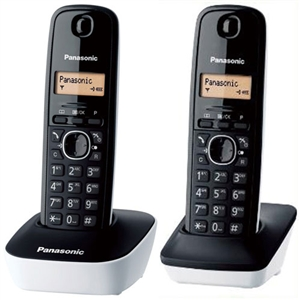 Panasonic國際牌 DECT數位無線電話KX-TG1612TW(白)