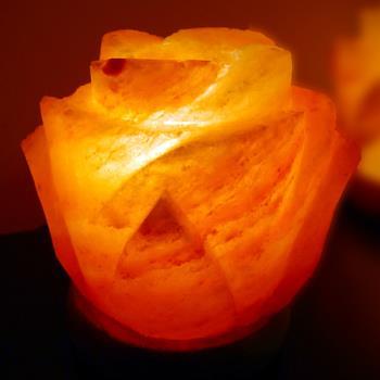 【Naluxe】義大利設計水晶鹽燈-花開富貴(薰香兩用款)