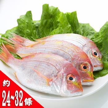【鮮味達人】現流赤宗鮮魚(8斤)嚐鮮組