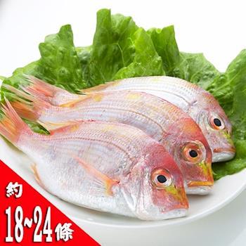 【鮮味達人】現流赤宗鮮魚(6斤)嚐鮮下殺組-集網