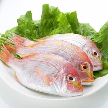【鮮味達人】現流赤宗鮮魚8條(250g±10%/條)嚐鮮組