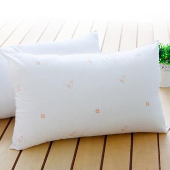 【BELLE VIE】防蹣抗菌健康枕(MIT 100%台灣製)-2組入