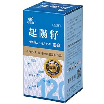 港香蘭 起陽籽