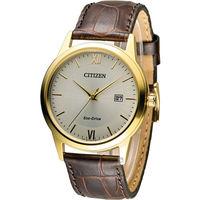 星辰 CITIZEN 光動能復古休閒經典腕錶 AW1232-12A 咖啡