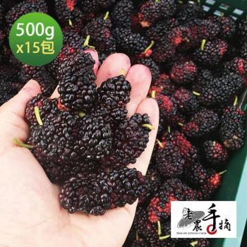 老農手摘 天然野生桑葚果-產地直銷(500公克15包)