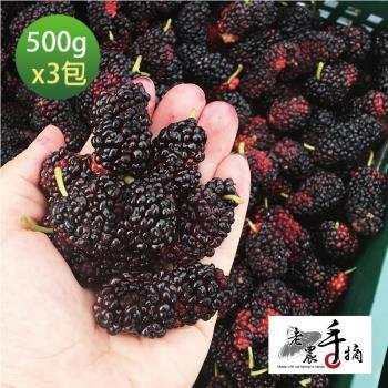 老農手摘 天然野生桑葚果-產地直銷(500公克3包)