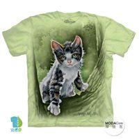 【摩達客】(預購)美國進口The Mountain 樹中小貓 純棉環保短袖T恤