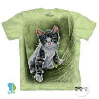 【摩達客】(預購)( 男童/女童裝)美國進口The Mountain 樹中小貓 純棉環保短袖T恤