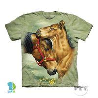【摩達客】(預購)( 男童/女童裝)美國進口The Mountain 草原親子馬 純棉環保短袖T恤