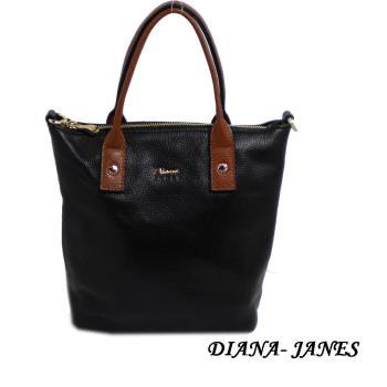 Diana Janes配色托特包