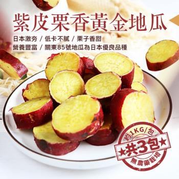 築地一番鮮 養身輕食紫皮栗香黃金地瓜3包(1kg/包)