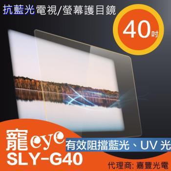 40吋 抗藍光液晶電視/螢幕護目鏡 (SLY-G40)