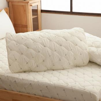 Ally 西崎 優質舒眠抗菌枕墊 二入組