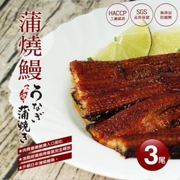 築地一番鮮 特大厚實銷日嫩蒲燒鰻3尾禮盒(500g/尾)
