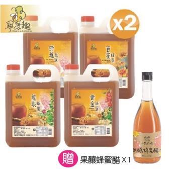 【尋蜜趣】嚴選蜂蜜3000g/桶超值任選2入組(龍眼/黃金/野地/百花)
