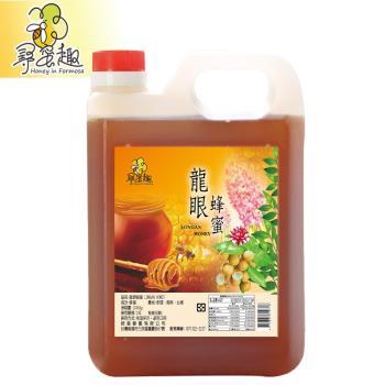 【尋蜜趣】嚴選龍眼蜂蜜3000g/桶(家庭號包裝)