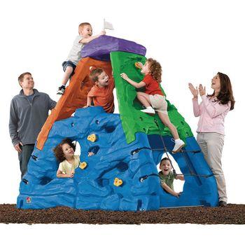 【華森葳兒童教玩具】戶外遊戲器材-Step2 挑戰巔峰-彩色 A4-739700