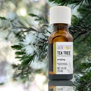 Aura cacia 卡希雅 茶樹原萃精油(15mL)