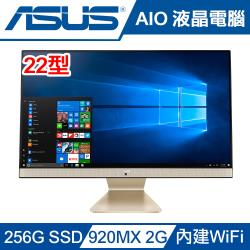 ASUS華碩桌上型AIO電腦 V221IDGK-420BA003T