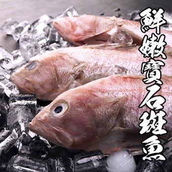 海鮮世家 菲律賓鮮嫩寶石斑魚4包組 700g±10%/包,3隻/包