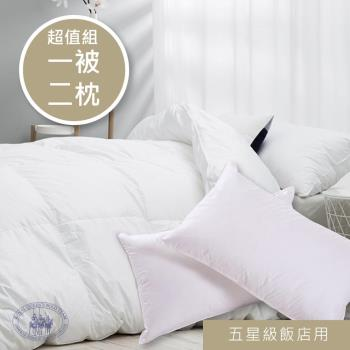 【R.Q.POLO】五星級大飯店民宿 羽毛被枕組 實絨實標 枕頭和被胎 (一被兩枕)