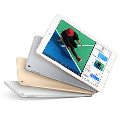iPad Wi-Fi  128GB (MPGW2TA/A)