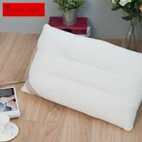ROBERTA DI CAMERINO諾貝達 義大利舖棉造型工學健康枕-2入組