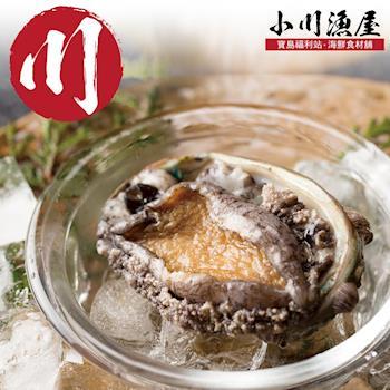 小川漁屋 極品南非活凍帶殼鮑魚2包(500g/包/約6~8粒)