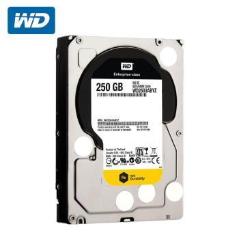 WD 威騰 WD2503ABYZ 企業級Re 250GB 3.5吋SATA硬碟